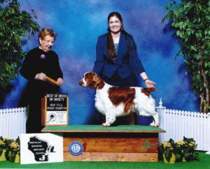 Cryslen Show Dogs - Performance & Conformation Dog Blog